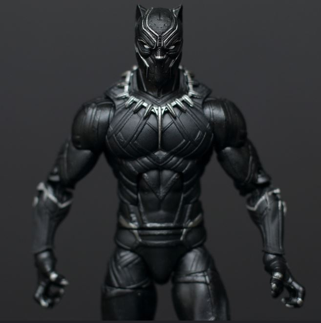Black Panther King Protector Leadership Convergent Consulting Blog